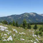 Wildalpe/Mürzsteger Alpen