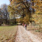 Babenbergerstrecke, Wienerwald