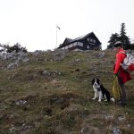 Geländ, Gutensteiner Alpen