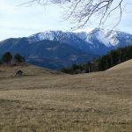 Hochberg / Gutensteiner Alpen