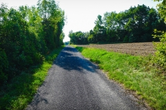 neue-welt-rundwanderweg_48787955352_o